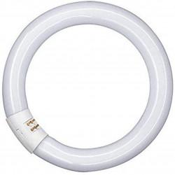 Kruhová zářivka OSRAM Lumilux T9 C, 32W, bílá